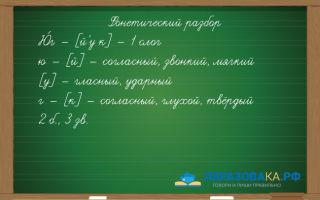Фонетический разбор слова «юг»