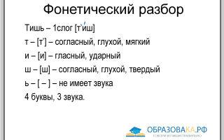 Фонетический разбор слова «тишь»