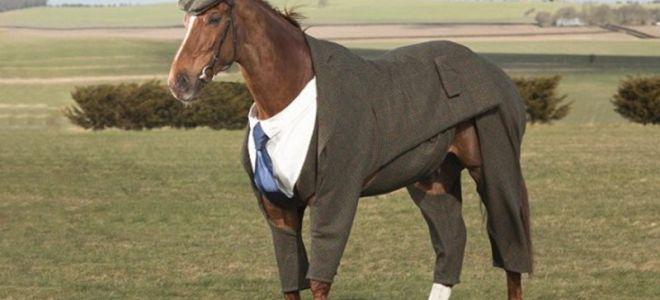 Фонетический разбор «пальто»