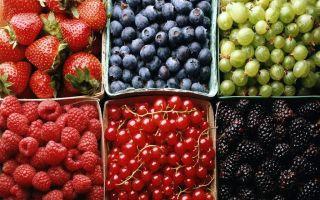 Фонетический разбор слова «ягода»