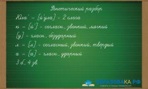 Фонетический разбор «юла»