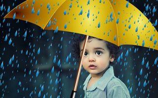 Фонетический разбор «дождь»